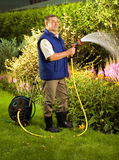 Fleurs de arrosage d'homme aîné dans le jardin Image libre de droits