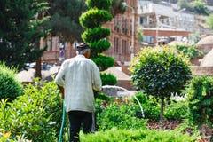 Fleurs de arrosage d'homme aîné dans le jardin Images libres de droits