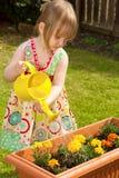 Fleurs de arrosage de petite fille photos stock