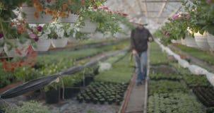 Fleurs de arrosage de travailleur dans 4K clips vidéos