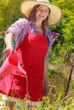 Fleurs de arrosage de femme dans le jardin Photographie stock libre de droits