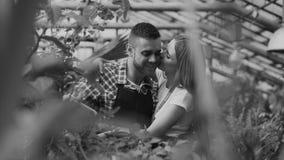 Fleurs de arrosage gaies de mari d'étreinte et de baiser de femme avec le pot de jardin Jeunes couples heureux de fleuriste dans  Photos libres de droits
