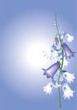 Fleurs de Bell illustration de vecteur