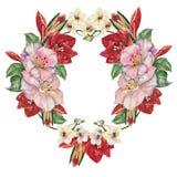 Fleurs de bouquet avec Amaryllis Guirlande florale d'illustration illustration stock