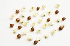 Fleurs de céréale et de cerise de chocolat Photos libres de droits