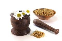 Fleurs de camomille avec le mortier Photo libre de droits