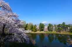 Fleurs de cerise et Mt Iwaki Photos stock