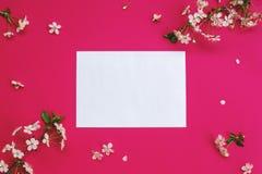 Fleurs de cerise et une feuille de papier blanche Image libre de droits