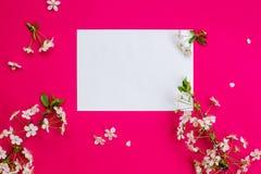 Fleurs de cerise et une feuille de papier blanche Images libres de droits