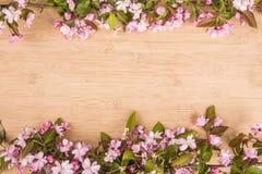 Fleurs de cerisier au-dessus de fond brouillé de nature Image stock