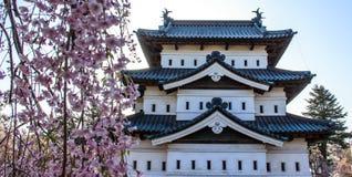 Fleurs de cerisier au parc de château de Hirosaki photos stock