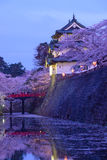 Fleurs de cerisier au parc de Hirosaki Photo stock