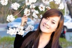 Fleurs de cerisier avec la femme photo stock