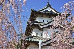 Fleurs de cerisier chez le Hirosaki Castel images libres de droits