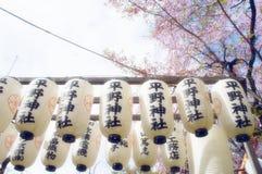 Fleurs de cerisier dans le temple du Japon photo libre de droits