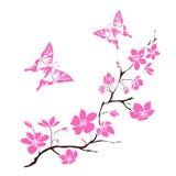 Fleurs de cerisier de brindille Photographie stock libre de droits