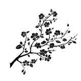 Fleurs de cerisier de brindille illustration de vecteur