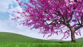 Fleurs de cerisier et animation en baisse des pétales 3D illustration de vecteur