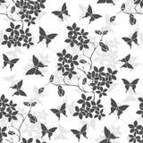 Fleurs de cerisier et papillon de brindille seamless Photos libres de droits
