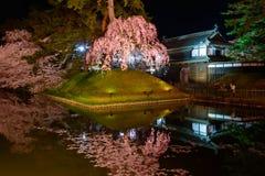 Fleurs de cerisier et parc de Hirosaki Photographie stock libre de droits