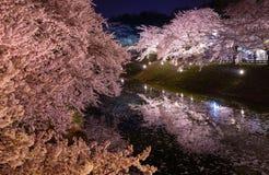 Fleurs de cerisier et parc de Hirosaki Photo stock