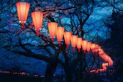 Fleurs de cerisier regardant le festival d'O-Hanami au parc d'Ueno, Tokyo, image libre de droits