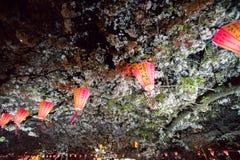 Fleurs de cerisier regardant le festival de Tokyo avec la lanterne Image libre de droits