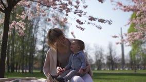 Fleurs de cerisier de Sakura - jeune m?re de maman s'asseyant avec son fils de b?b? de petit gar?on en parc ? Riga, Lettonie l'Eu clips vidéos
