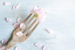 Fleurs de cerisier sur le concept de nourriture de fourchette Photos libres de droits