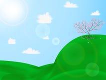 Fleurs de cerisier sur une colline verte illustration de vecteur
