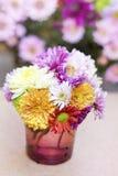 Fleurs de chrysanthèmes dans le vase en verre pourpre Photo stock