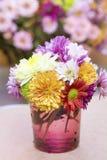 Fleurs de chrysanthèmes dans le vase en verre pourpre Photographie stock