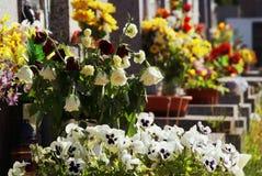 Fleurs de cimetière Photographie stock