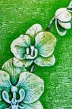 Fleurs de cire Photos stock