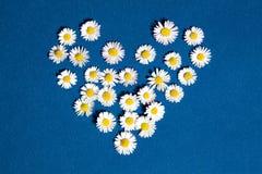 Fleurs de coeur Photo stock