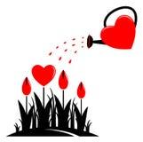 Fleurs de coeur et boîte d'arrosage Image stock