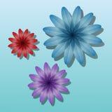Fleurs de couleur de volume Photographie stock