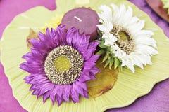 Fleurs de couleur et une bougie Photo libre de droits