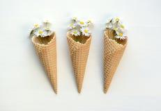 Fleurs de crème glacée  photographie stock libre de droits