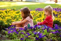 Fleurs de cueillette de garçon et de fille pour la mère. Photos stock