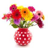 Fleurs de dahlia et de Gerber Photographie stock libre de droits