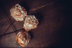 Fleurs de dentelle sur le fond foncé Images stock