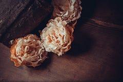 Fleurs de dentelle sur le fond foncé Photo stock