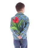 Fleurs de dissimulation de garçon des tulipes rouges derrière se Images stock