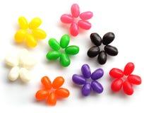 Fleurs de dragée à la gelée de sucre images stock