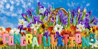 fleurs de fête et de félicitations sur le plan rapproché de fond de fleurs Images stock