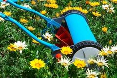 Fleurs de fauchage Photographie stock libre de droits