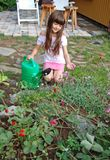 Fleurs de fille et d'alpin image stock