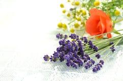 Fleurs de fines herbes photos stock