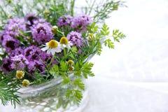 Fleurs de fines herbes photo libre de droits